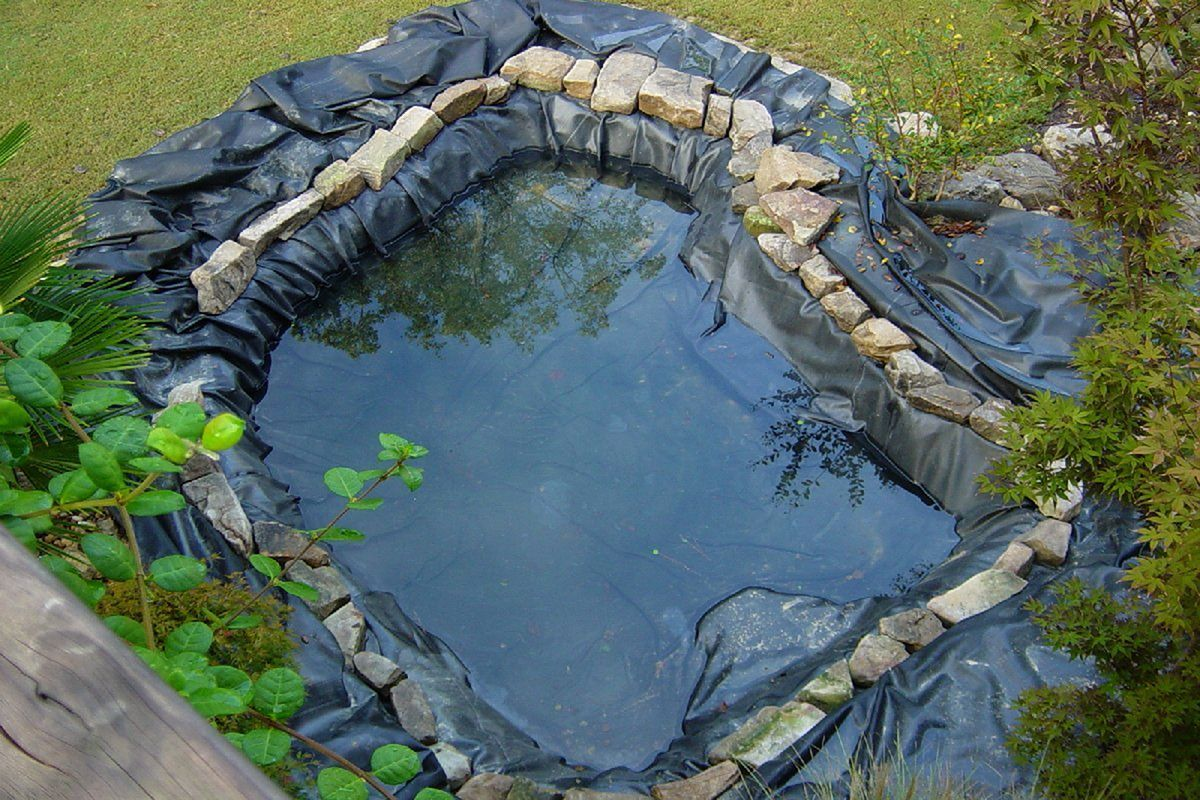 45 Best Indispensable Pond Liners Ideas For Your Garden Freshouz Com Natural Swimming Ponds Ponds Backyard Pond Liner