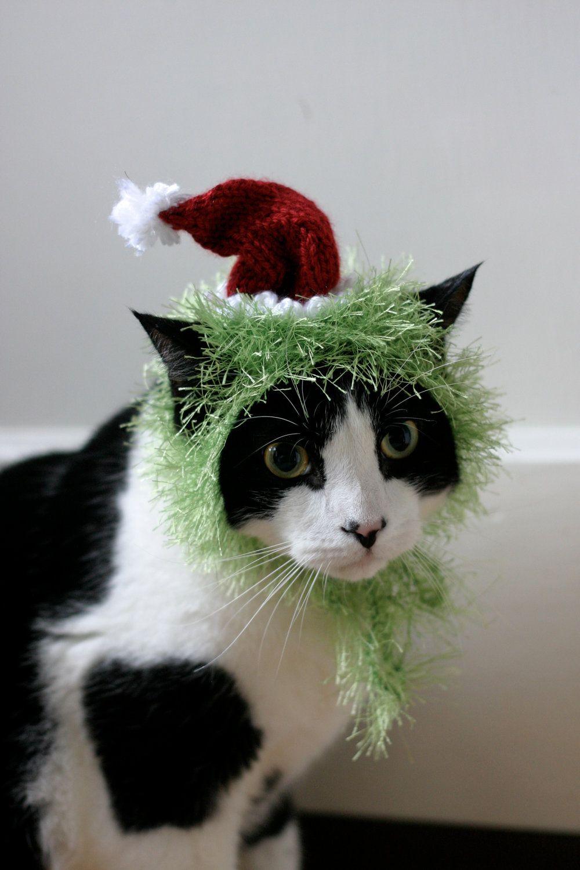 The Grinch Cat Hat Christmas Dr Seuss Pet Costume Stacy