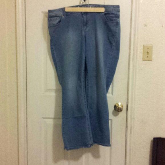 Lane Bryant Jeans Bootcut Genius fit Lane Bryant Jeans Boot Cut
