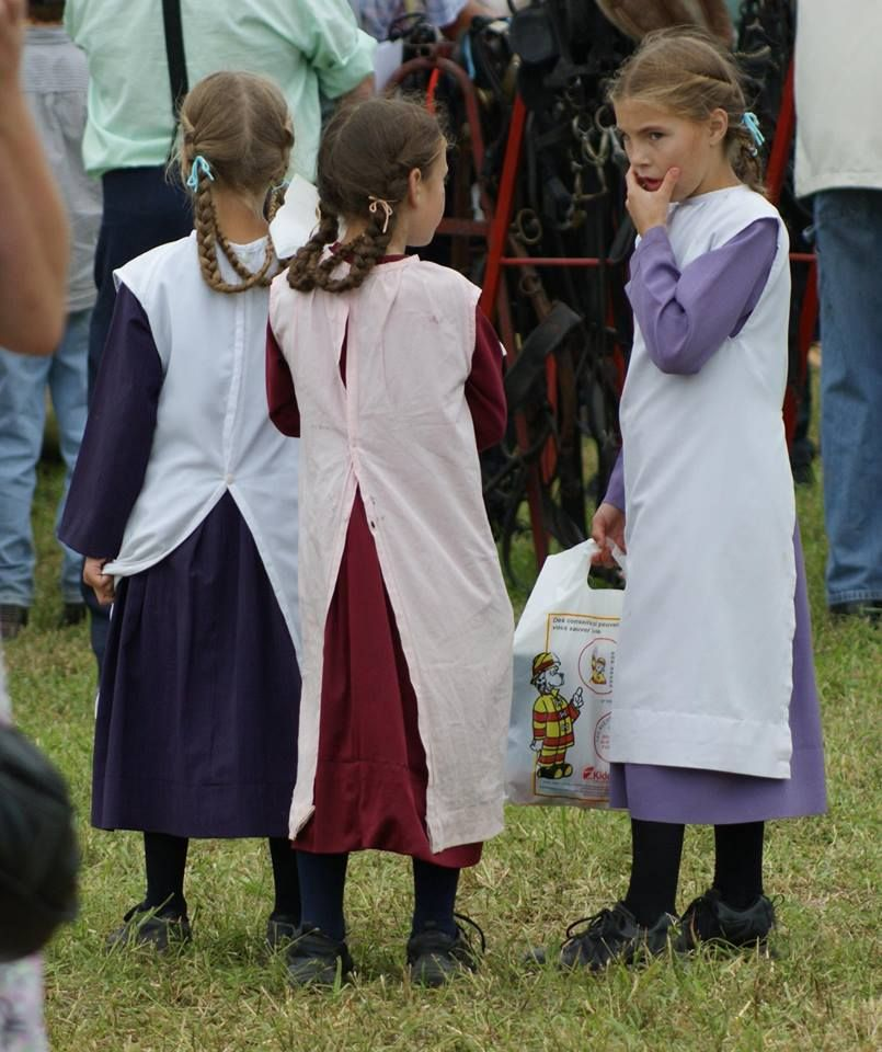 Milverton Amish The Original Direct From Germany To Canada Group