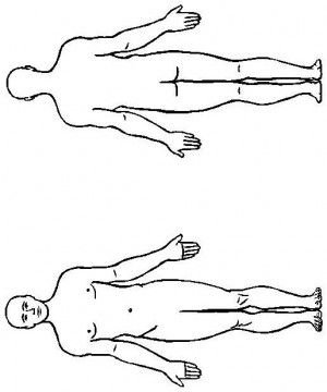 Human body coloring page 18 | Anatomija | Pinterest | Human body