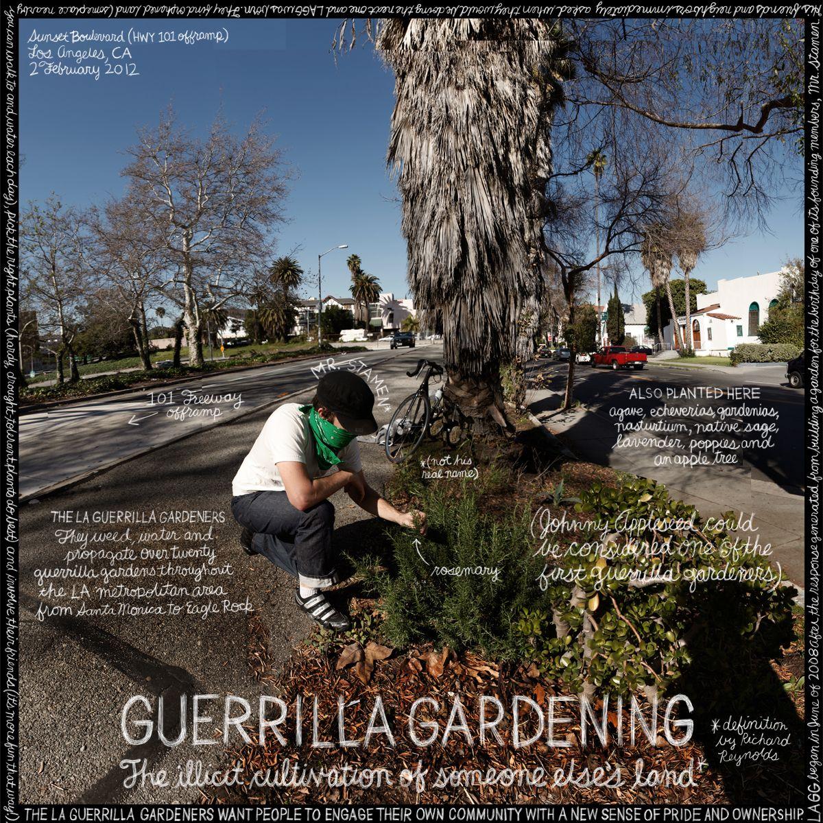 """Garden Decor Los Angeles: #89. """"Guerrilla Gardening"""". Mr. Stamen, LAGG (Los Angeles"""