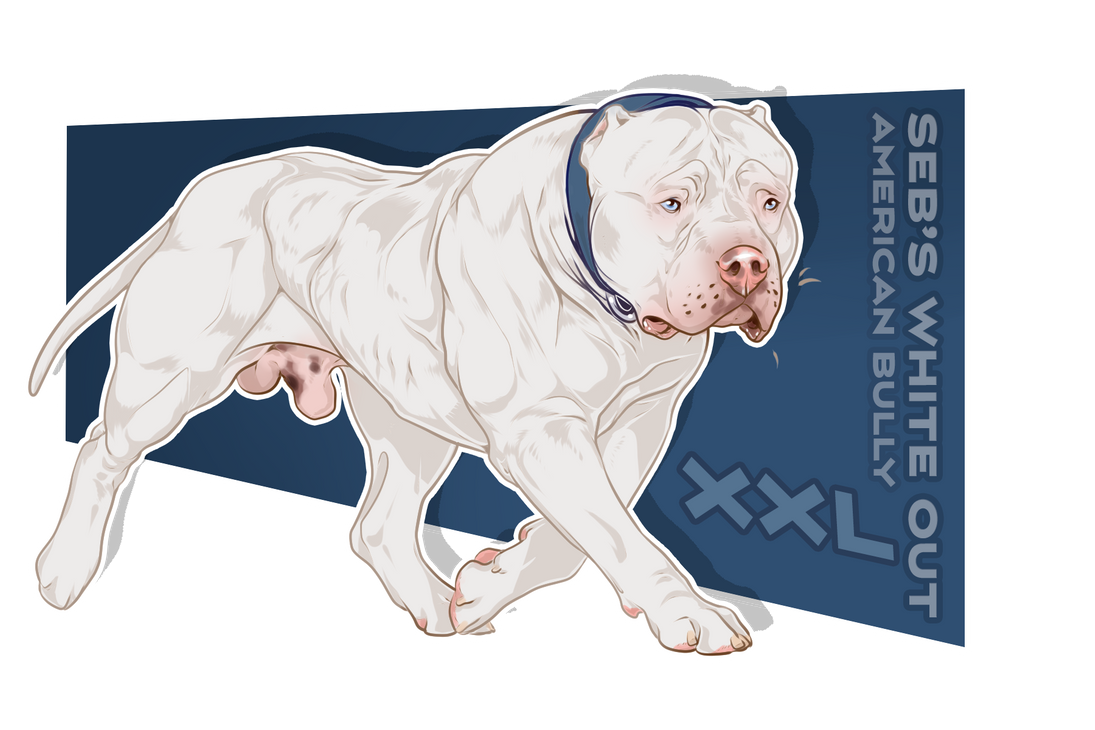 Seb S White Out By Rio Grande Bullz On Deviantart In 2020 Dog Animation Dog Art Dog Drawing