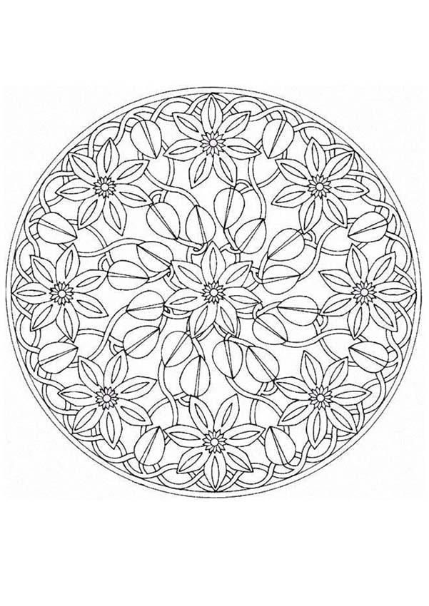 download or print these amazing mandala coloring pages at your own will and spread the news - Advanced Mandala Coloring Pages
