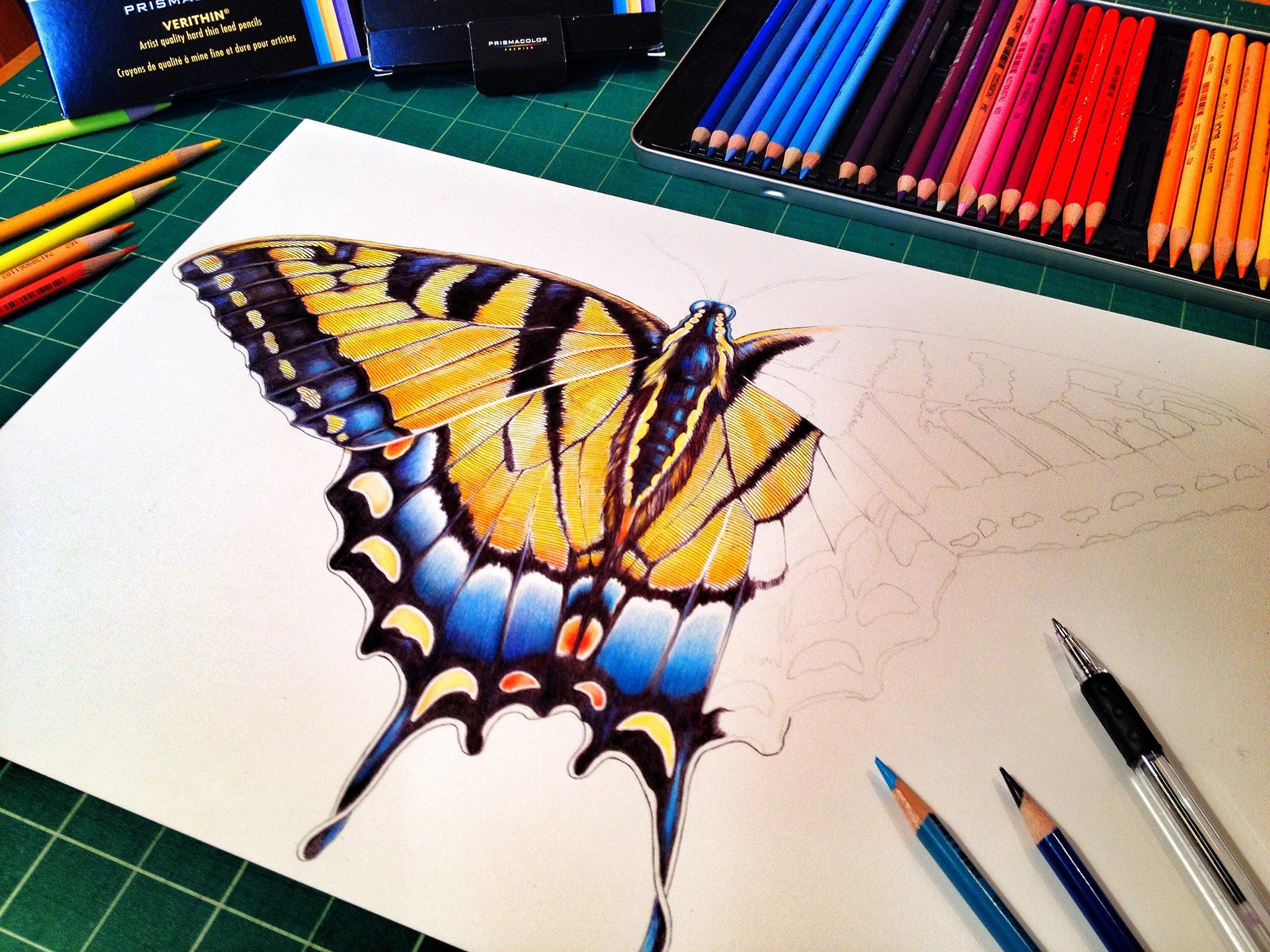 More Progress On My Swallowtail Butterfly Colored Pencil Drawing Etsy