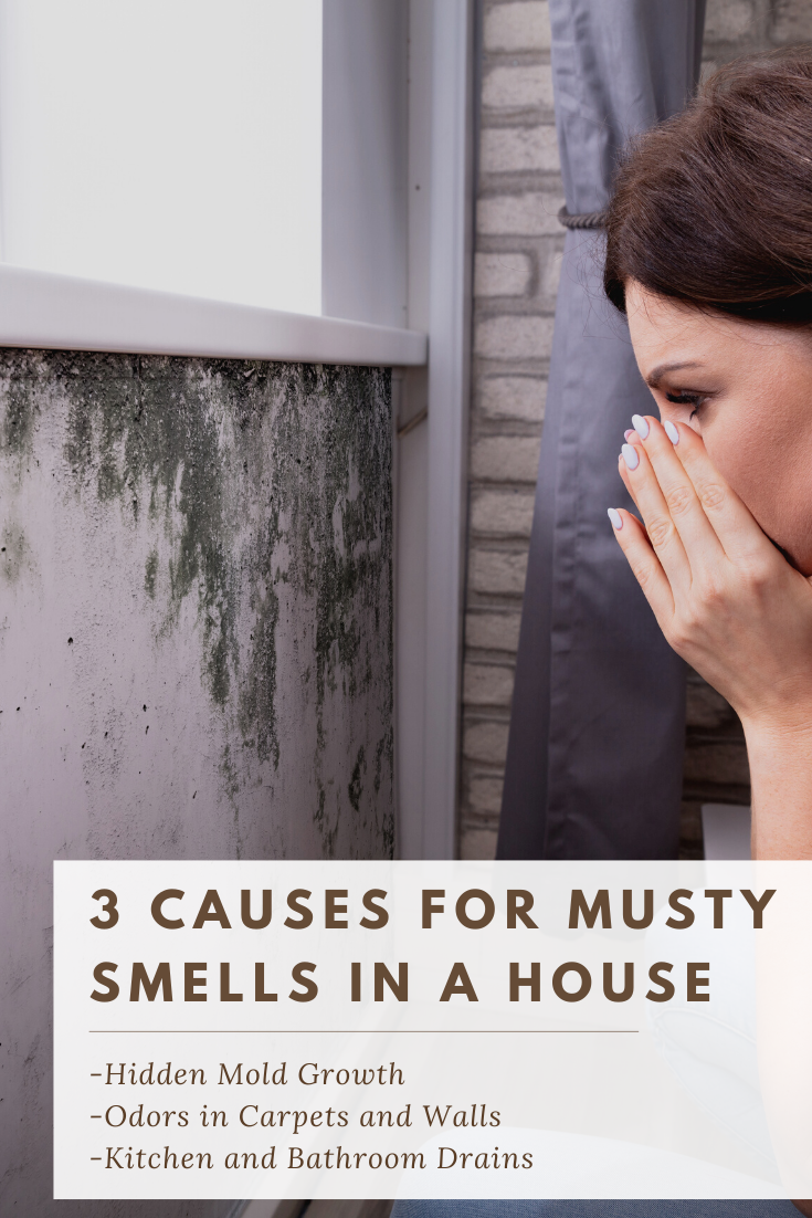 Mildew vs Mold Smell Indoors | Mold exposure, Mold in ...