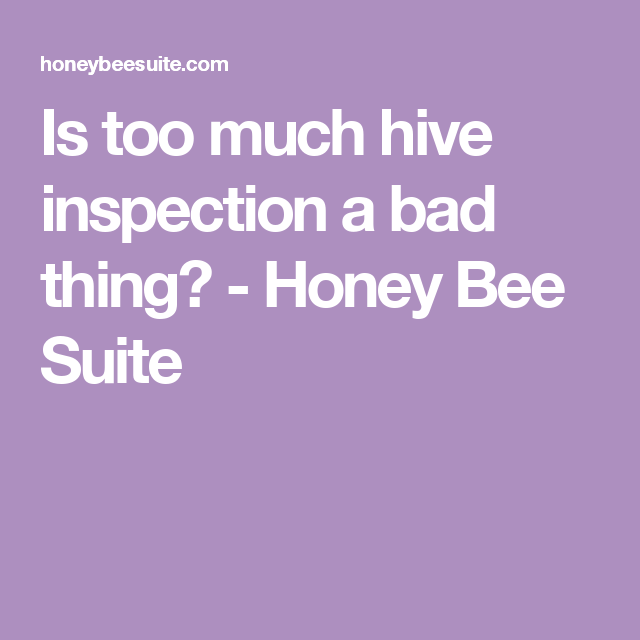 Is too much hive inspection a bad thing? - Honey Bee Suite