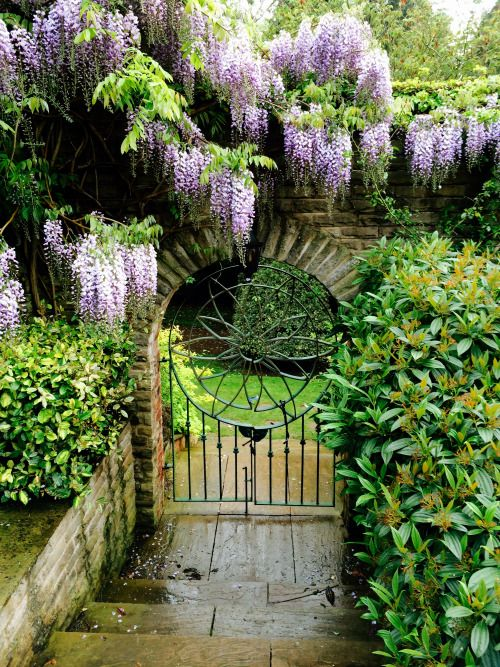 avoicethroughacloud:Wisteria, Judge's Country House Hotel ...