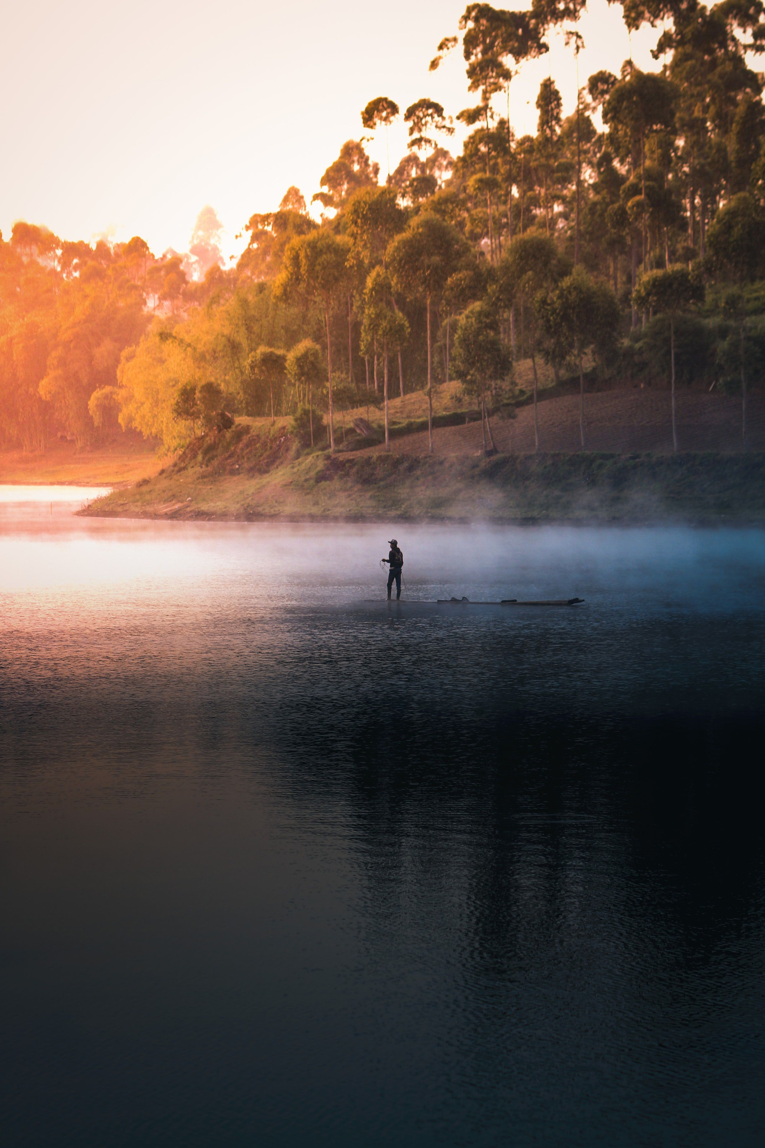 Best 100 Fishing Pictures Download Free Images On Unsplash Nature Wallpaper Cool Backgrounds For Iphone Nature