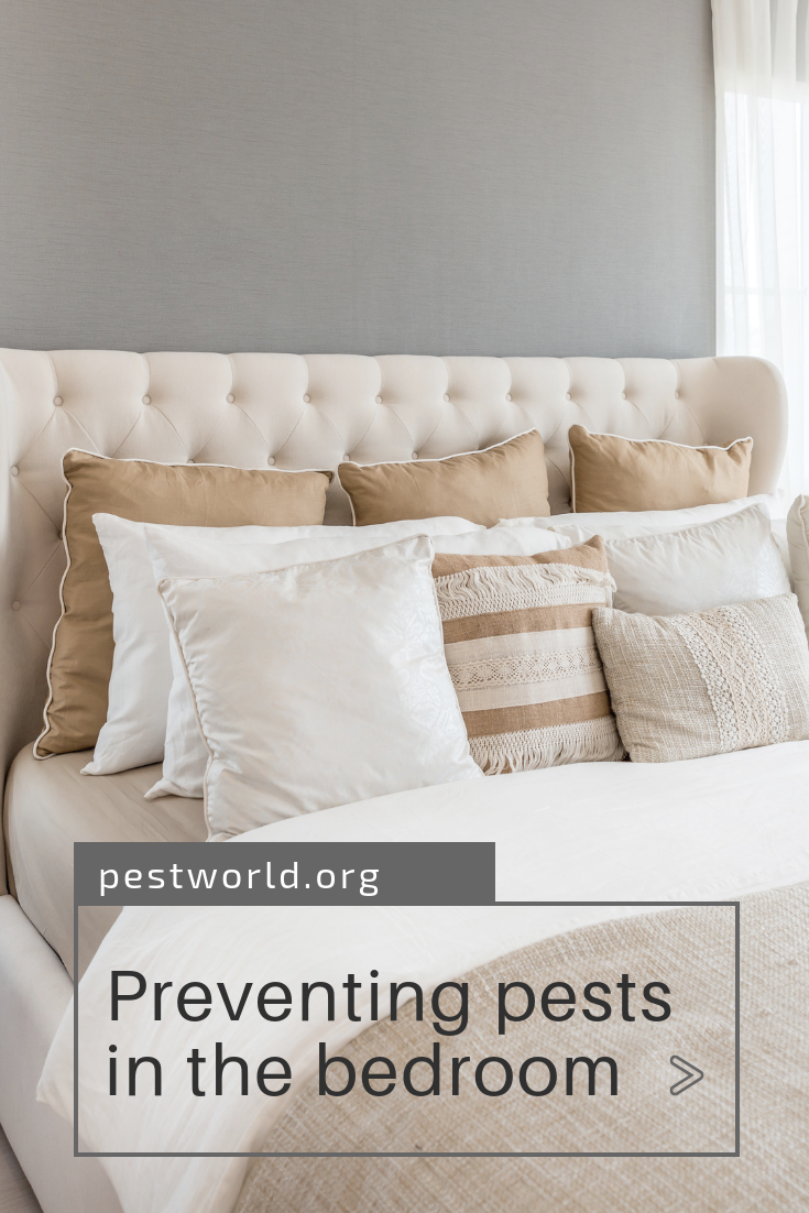 Discover The Most Common Pests Found In The Bedroom Beyond Bed Bugs Humming Bird Feeders Rid Of Bed Bugs Pests