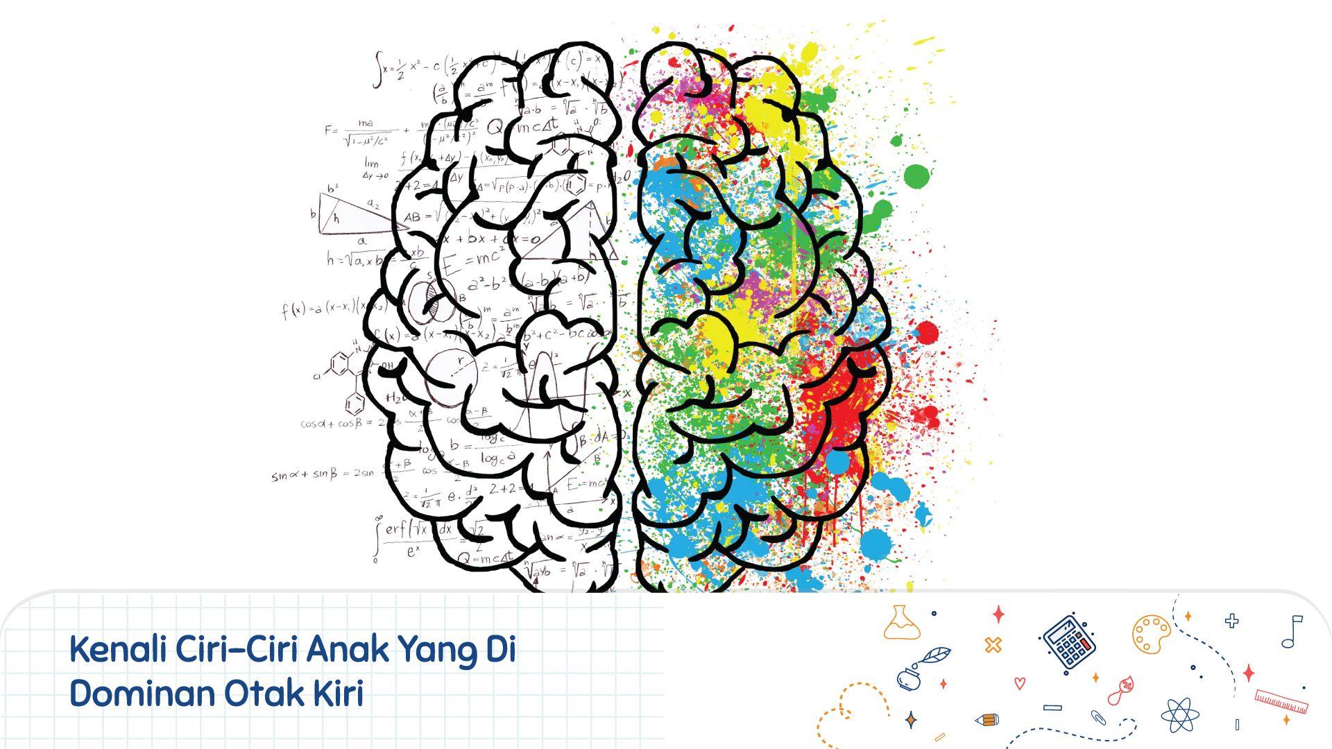 Kenali Ciri Ciri Anak Yang Di Dominan Otak Kiri Pola Otak Kanan Sekolah