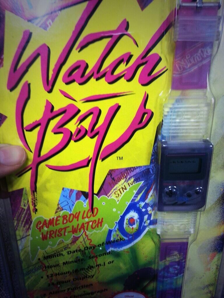 WatchBoy watch