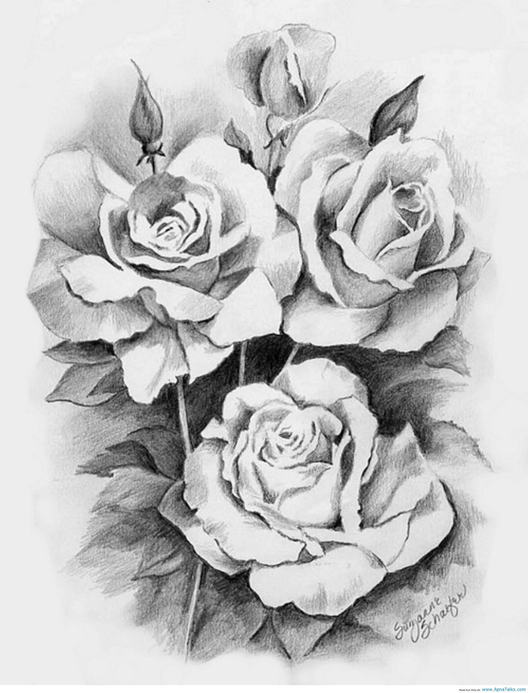 Beautiful 3 Roses Drawing Drawings Art And Design Bloemen Tekenen Bloementatoeages Bloemen Kleurplaten