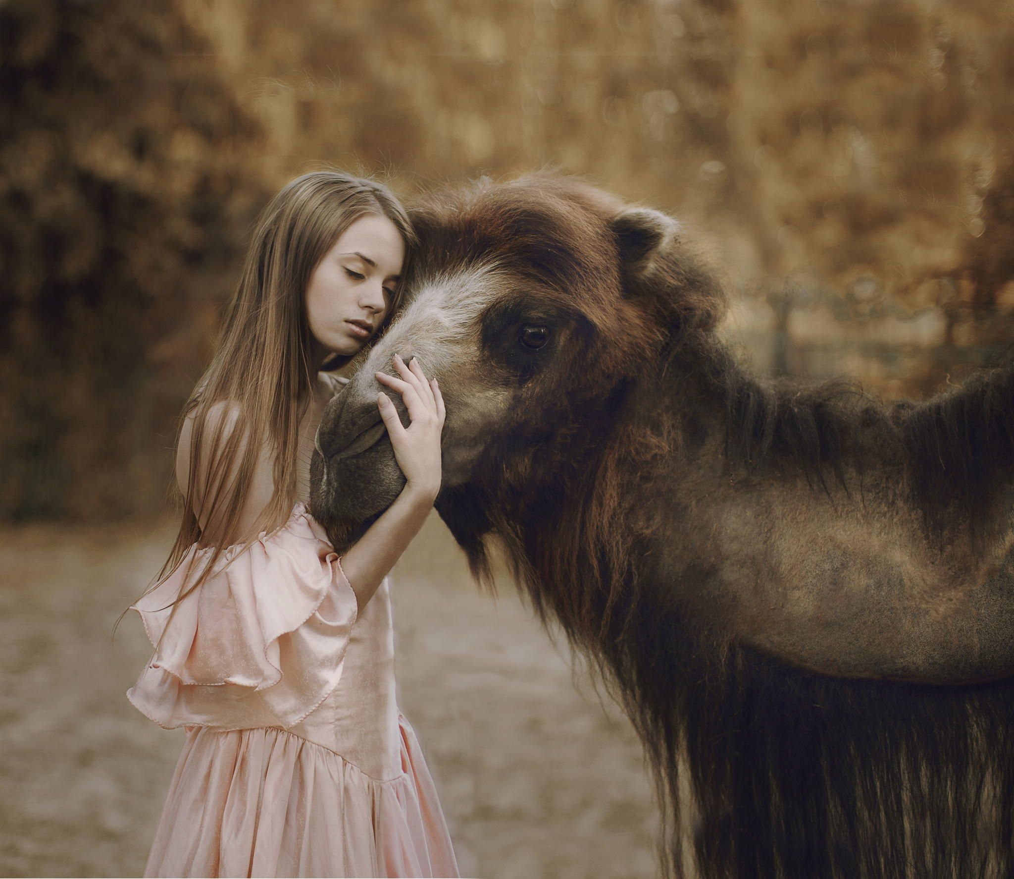 Photograph Untitled By Katerina Plotnikova On Px - Russian photographer takes enchanting fairytale photos featuring wild animals