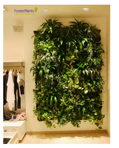 Miami Gets Woolly With A Splendid Living Wall
