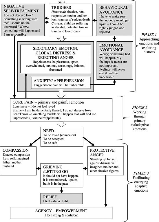 Case conceptualization in emotion focused therapy for Case formulation template