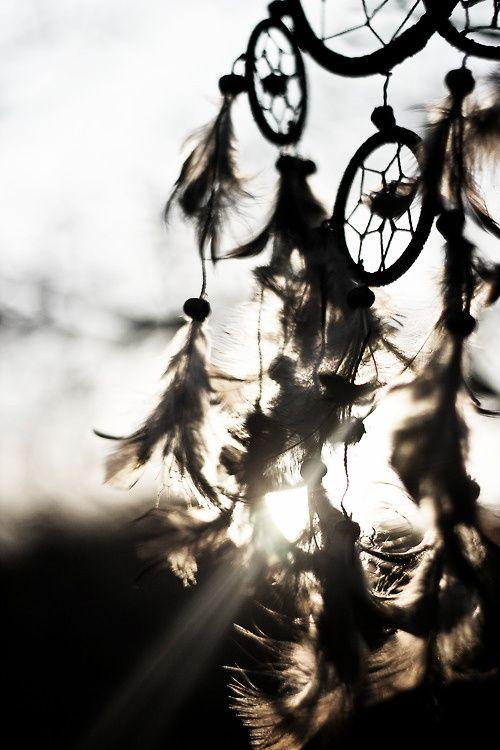 http meriamber tumblr com dreamcatcher dream catcher feathers