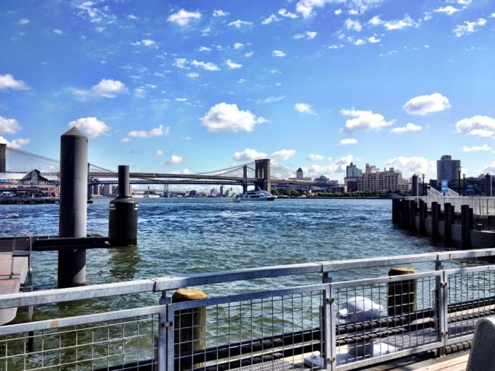 NY Waterway Ferry - Wall St/Pier 11 Terminal   central park