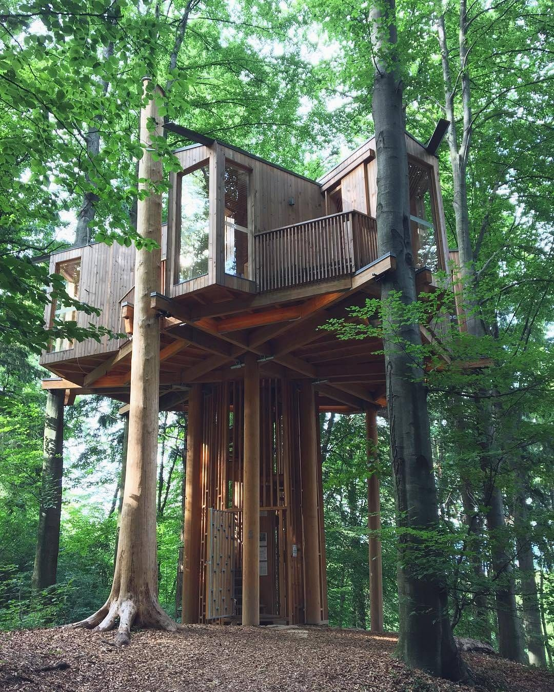 The Largest Tree House In Slovenia Is Located In Celje City Forest Impressive Right Tree House Slovenia Pergola