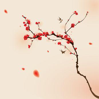 Japon cerisiers en fleur tatoo pinterest cerisier en fleur cerisier et en fleur - Branche de cerisier japonais ...