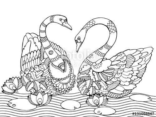 Download The Royalty Free Vector Swan Coloring Book For Adults Designed By Alexander Pokusay At Lowest Price On Fotolia