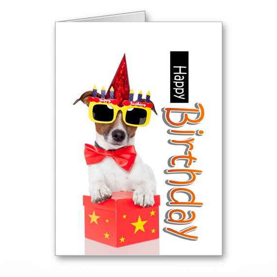 Greetings Cards Birthday Dogs Jack Russell By Thelazycatstudio