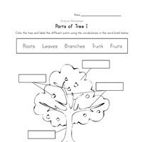 Worksheets. Parts Of A Tree Worksheet. Pureluckrestaurant Free ...