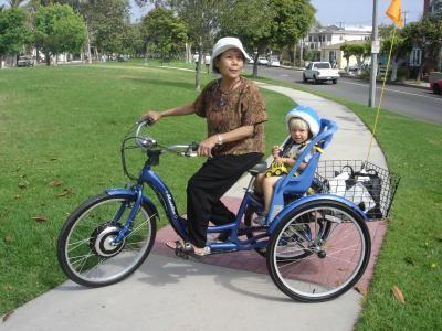 Walmart Schwinn 26 Quot Schwinn Meridian Adult Tricycle Blue