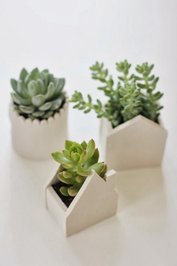 Diy.....maceteros originales para cactus | Cactus, Macetas y Originales