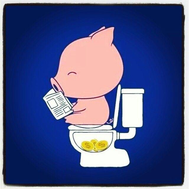 Pig coins