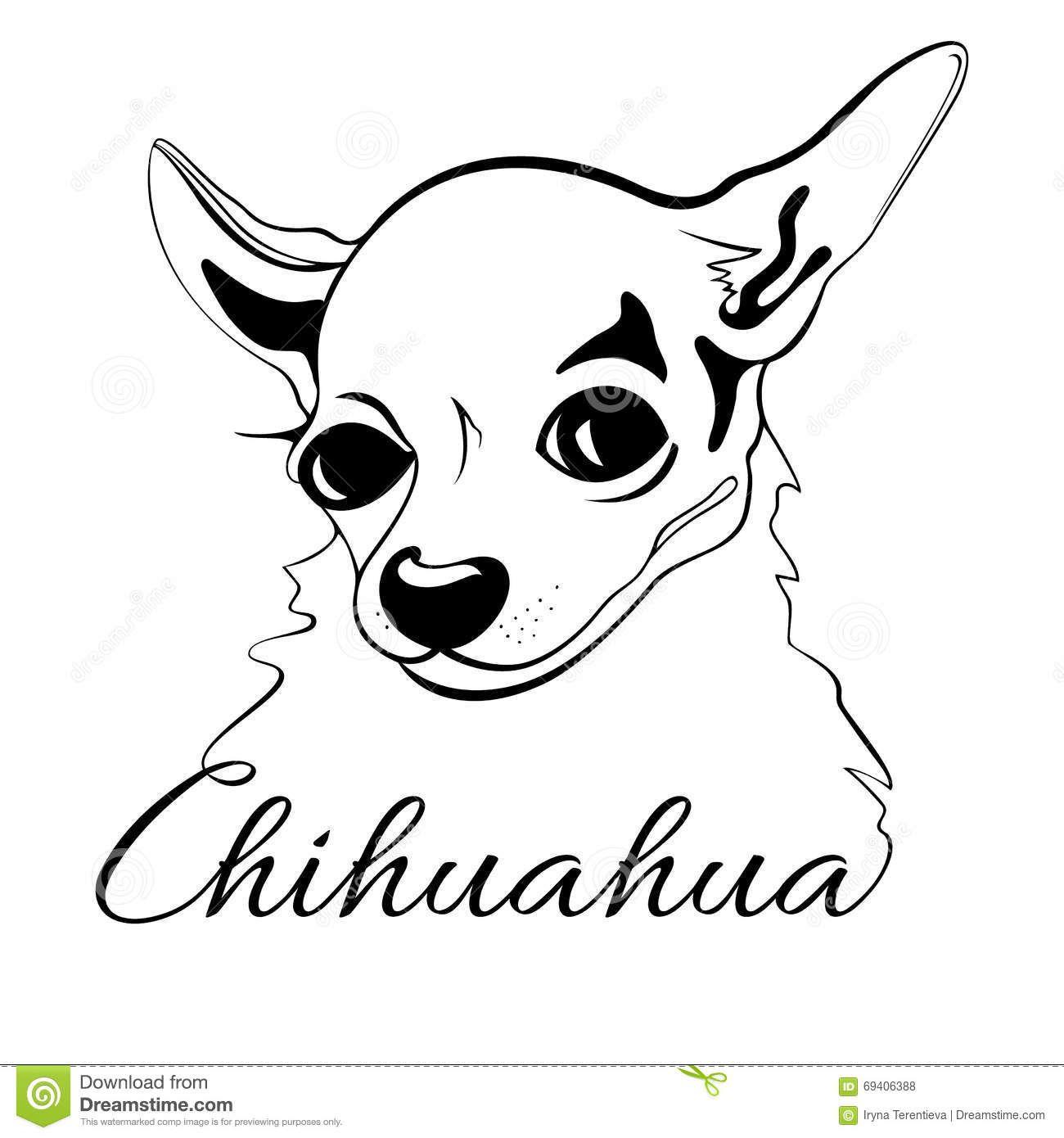 Chihuahua Dog Head Stock Vector Image 69406388 Chihuahua Drawing Drawings Dog Illustration [ 1390 x 1300 Pixel ]