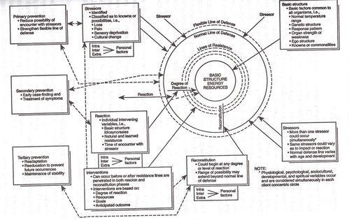 neuman system model blank