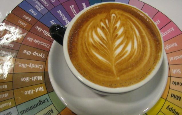 Houston Coffee Roasters You Need To Know