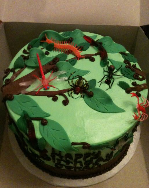 Pleasant Bug Themed Birthday Cake With Images Bug Birthday Cakes Funny Birthday Cards Online Overcheapnameinfo