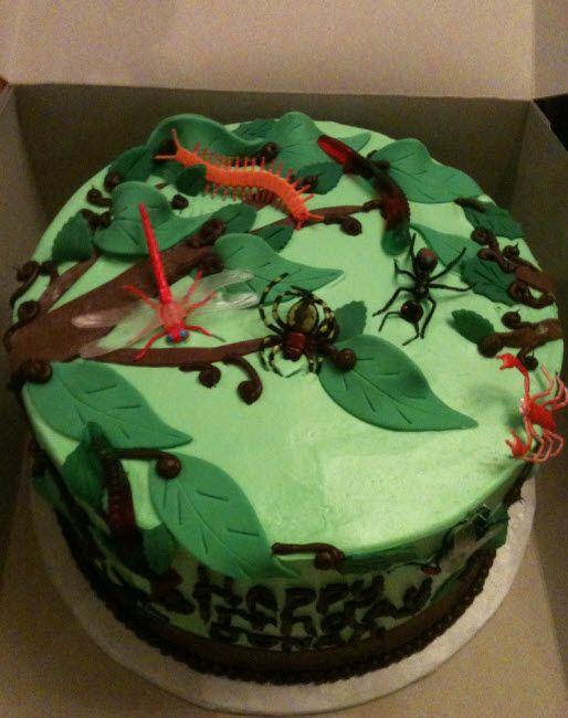 Strange Bug Themed Birthday Cake With Images Bug Birthday Cakes Funny Birthday Cards Online Overcheapnameinfo
