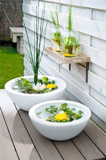 Minivijver voor in de tuin op een tafel tuin pinterest for Kleine tuinvijver