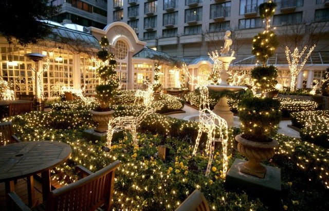 christmas tree lighting at the fairmont hotel in georgetown dc with 30 animated reindeer