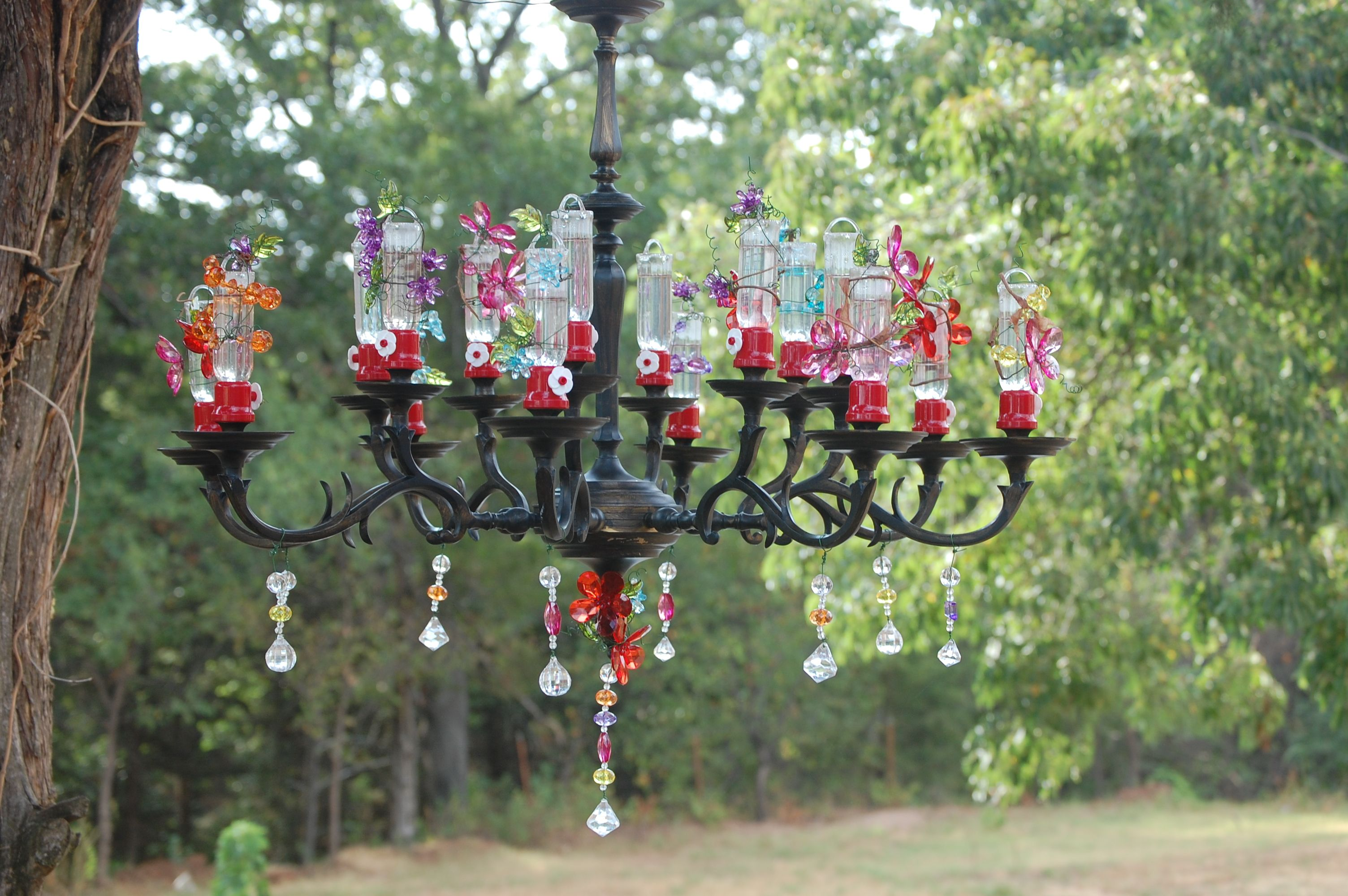 than the blog part more decorative img hummingbird ever garden habitat feeder amazing tour thing coolest yard feeders in native around hung clusters