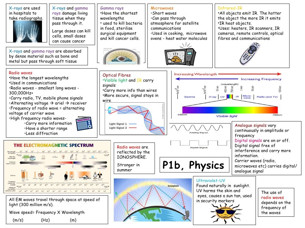 P1b Revision Template