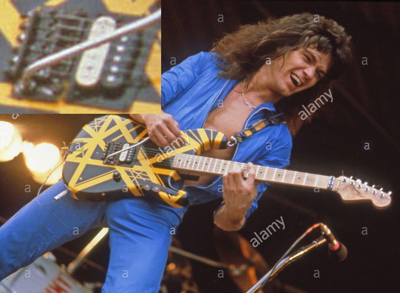 Bumble Bee Evh Sustain Block Jpg Van Halen Eddie Van Halen Van Halen 5150