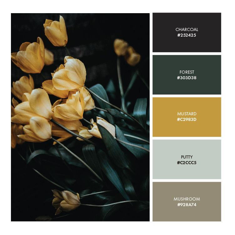 Warm Yellow Brand Color Palette images