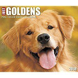 Golden Retrievers Calendar 2018 Just Goldensbox Calendar Dog