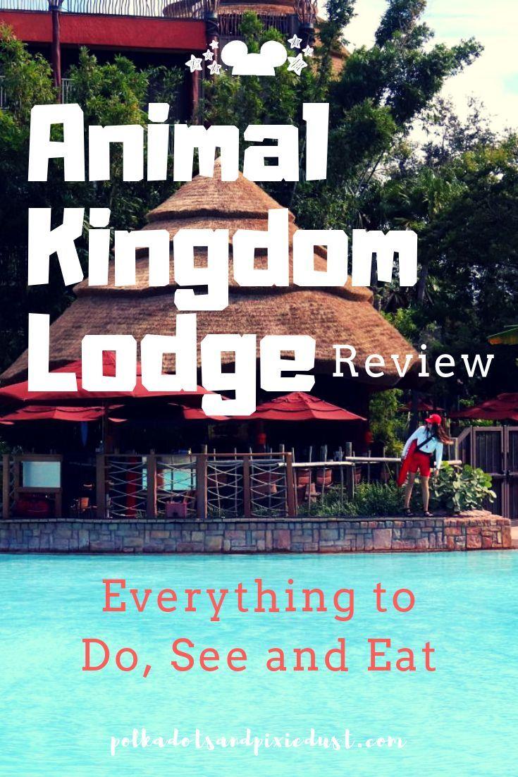 Animal kingdom lodge a disney resort review disney