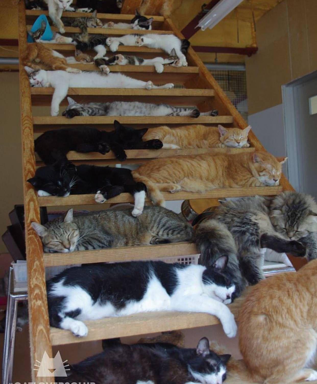 Sleeping time - -' http://ift.tt/2FqKWoY