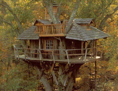 Una casa sull 39 albero case sull 39 albero pinterest - Costruire una casa sull albero ...