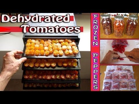 Dehydrated Tomatoes + Frozen Peppers Food Storage - How to dehydrate excalibur 2400 dehydrator