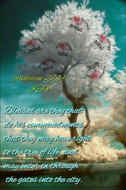 Revelation 22:14 | Heaven Speaks | King james bible verses, Bible