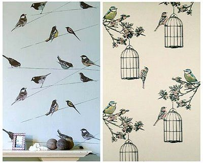 Love Bird Wallpaper For A Feature Wall In A Guest Bedroom Or Dining Room