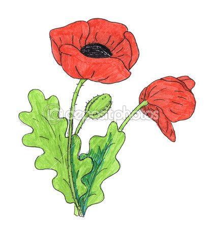 Poppy flower drawing stain pinterest flower and flower silhouette poppy flower drawing mightylinksfo