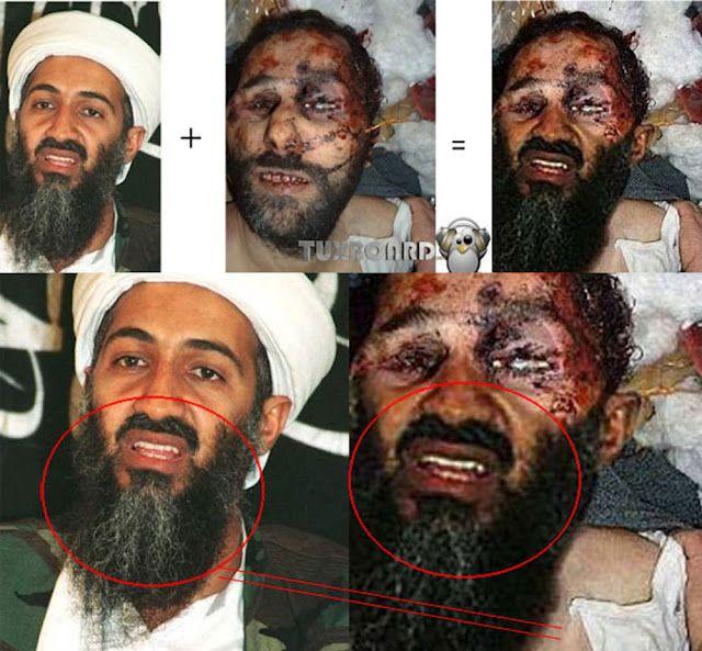 Het familieleven van de Bin Ladens  TROUW